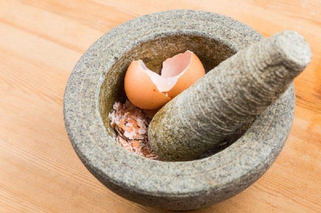 Gambar cara mengusir tikus dari rumah paling ampuh dengan kulit telur