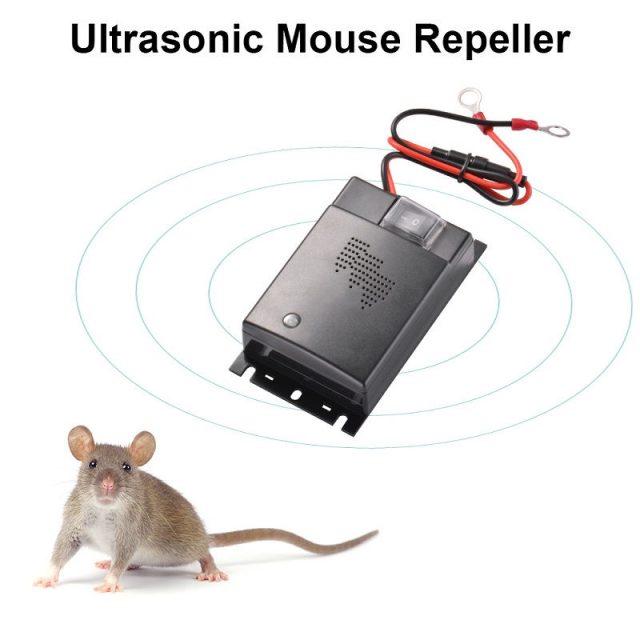 Gambar Cara Mengusir Tikus Dengan Cuka Dan Alat Pengusir Tikus Canggih Dengan Suara Ultrasonik