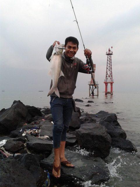 Gambar Ikan Laut Dangkal-ikan kuro