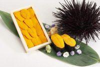 Gambar Uni Sushi Makanan Dari Bulu Babi