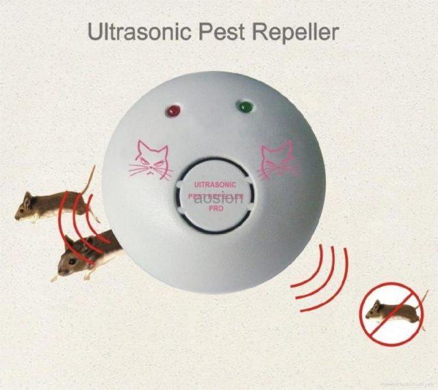 Gambar Alat Untuk Mengusir Tikus