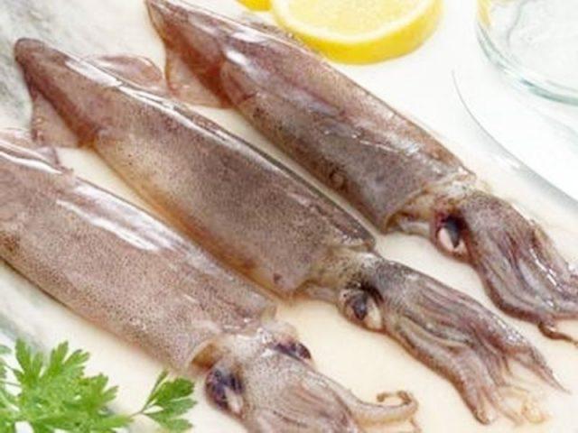 Gambar Harga Ikan Laut - Sotong