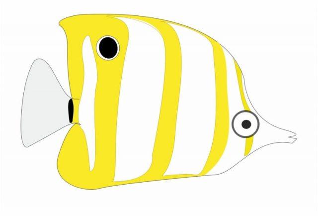 Gambar Ikan Hias Kartun