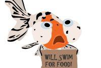 ikan lucu bikin ngakak