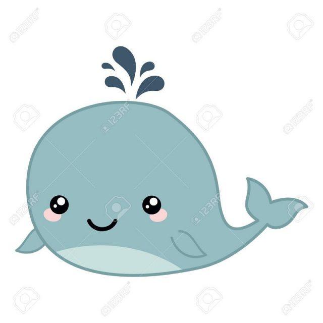 ikan paus lucu